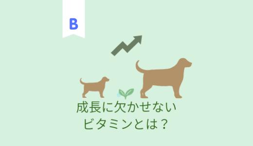 犬の成長に欠かせないビタミン 葉酸の働きとは?