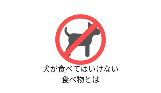 犬が食べてはいけない食べ物って?食材一覧とその理由