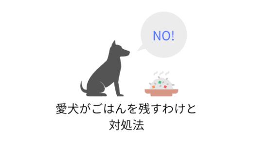 愛犬がご飯を残してばっかり!ごはんを食べない理由と対処法