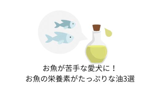 お魚が苦手な愛犬に!お魚の栄養素がたっぷりな油3選