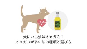 犬にいい油はオメガ3!オメガ3がおすすめの理由と油の選び方