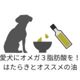 愛犬にオメガ3脂肪酸を!はたらきとオススメの油