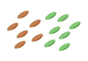 良質なタンパク質を含むレンズ豆