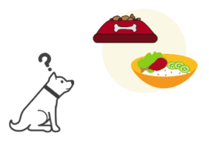 ペットホテルに泊まるとき、手作りごはんかドッグフードか迷う犬
