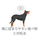 愛犬が喉に詰まりやすい食べ物と対処法