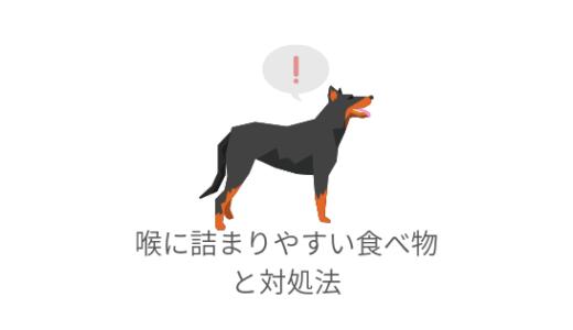 犬が喉に詰まりやすい食べ物と対処法