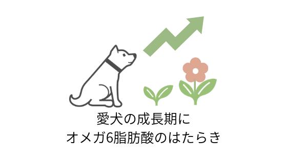 愛犬の成長期に必要なオメガ6脂肪酸のはたらき
