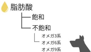 飽和脂肪酸と不飽和脂肪酸の種類分け