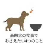 高齢犬の食事でおさえたい4つのこと
