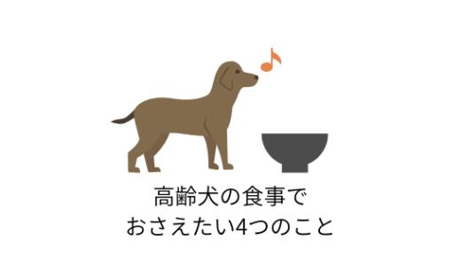 流動食じゃなくてもいいの?高齢犬の食事でおさえたい4つのポイント