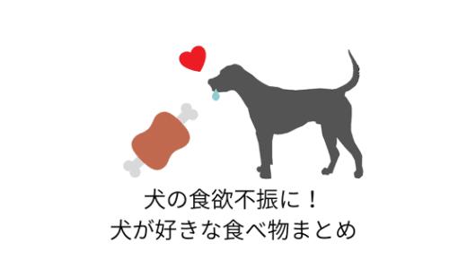 愛犬の食欲不振に!食欲増進する犬が好きな食べ物まとめ