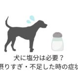 犬に塩分は必要?摂りすぎ・不足した時の症状