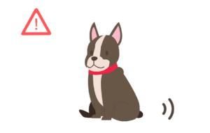 お尻を引きずりながら歩く犬