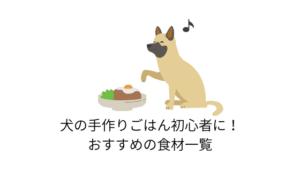 犬の手作りごはん初心者におすすめの食材一覧!食材選びに!