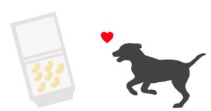 納豆は愛犬におすすめ