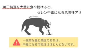 愛犬の納豆のたべすぎは、セレン中毒になることがある。