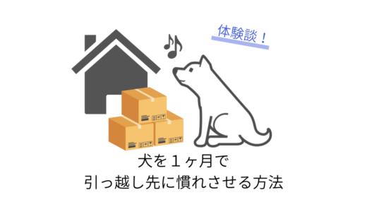 犬を1ヶ月で引っ越し先に慣れさせる方法【実体験】