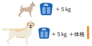 愛犬のクレート選びの基準
