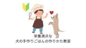 栄養満点な犬の手作りごはんの作りかた教室【初心者向け】