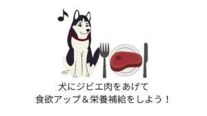 ごはんを食べない老犬にジビエ肉(鹿肉)がおすすめな理由