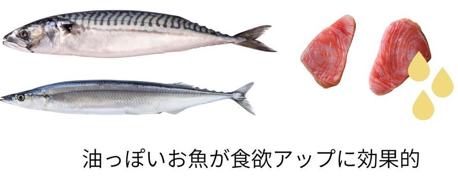 油っぽいお魚が食欲アップに効果的
