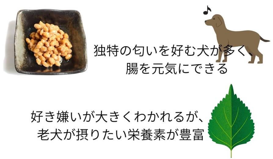 納豆やしそは老犬におすすめ