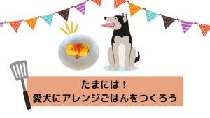ごはんに変化を!愛犬にアレンジごはんをつくろう【全8レシピ】