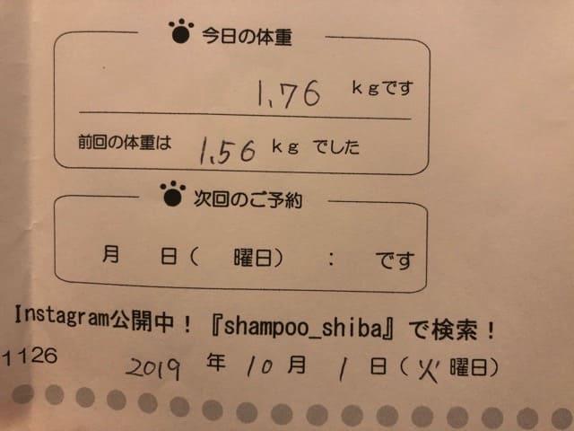 2019年10月1日のトリミングの体重測定結果
