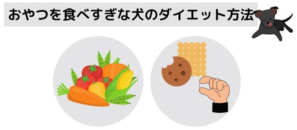 おやつをついつい食べすぎてしまう犬のダイエット方法