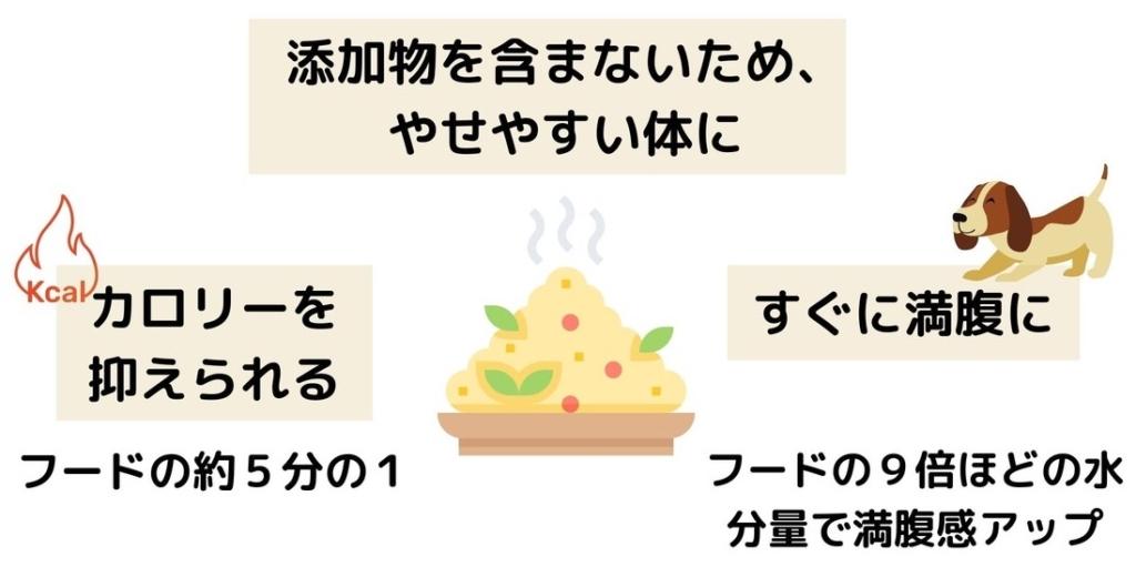手作りごはんはカロリーが抑えられて、すぐに満腹になるからダイエットの最適