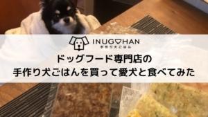 ドッグフード専門店の手作り犬ごはんを買って愛犬と食べてみた