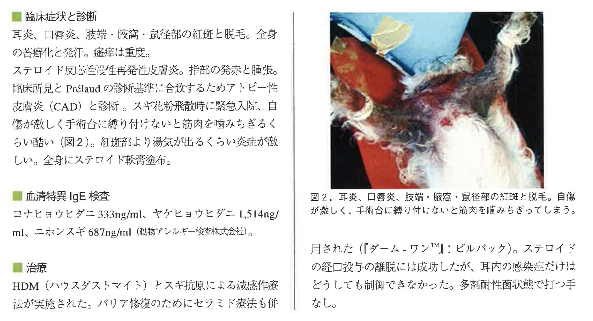 犬の多剤耐性菌の問題とその対処方法 (特 に耳へのチャレンジ)後編