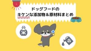 【犬の栄養士が解説】ドッグフードの危険な添加物&原材料まとめ